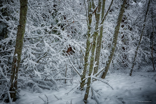 Stand_snow_HDR