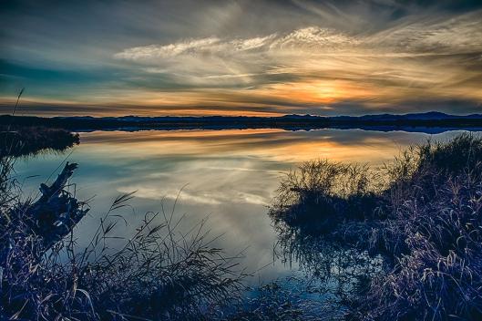 wetlands_combo1